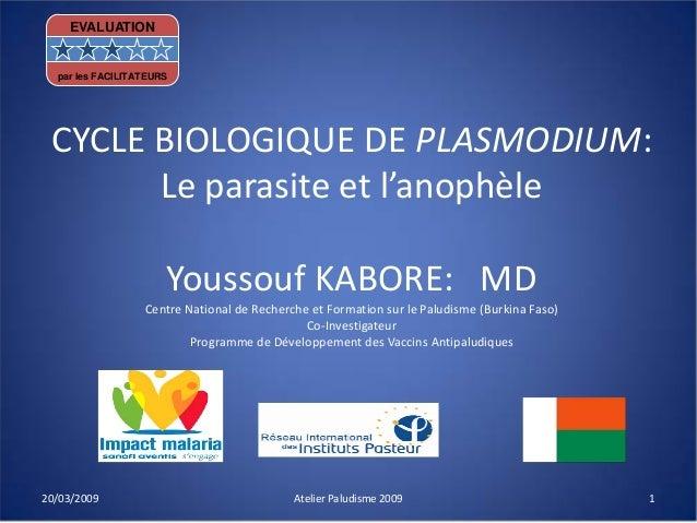 CYCLE BIOLOGIQUE DE PLASMODIUM:Le parasite et l'anophèleYoussouf KABORE: MDCentre National de Recherche et Formation sur l...