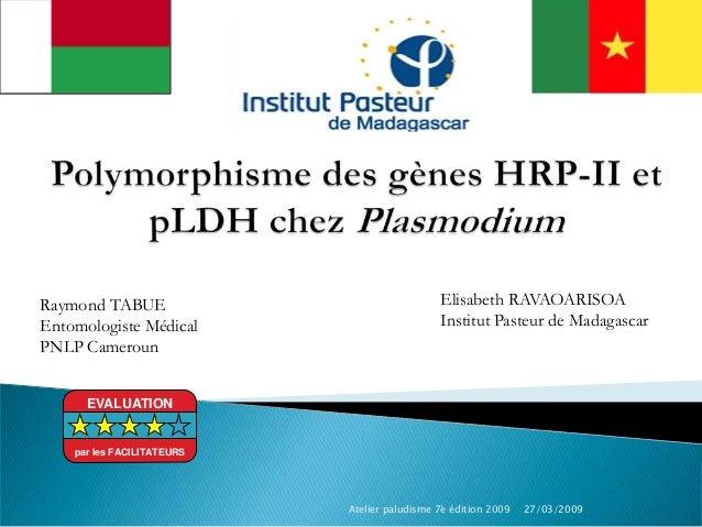 Raymond TABUEEntomologiste MédicalPNLP CamerounElisabeth RAVAOARISOAInstitut Pasteur de Madagascar27/03/2009Atelier paludi...