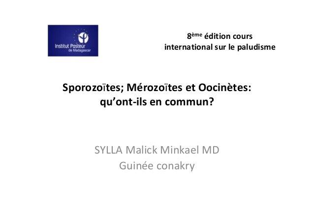 8ème édition cours                   international sur le paludismeSporozoïtes; Mérozoïtes et Oocinètes:       qu'ont-ils ...