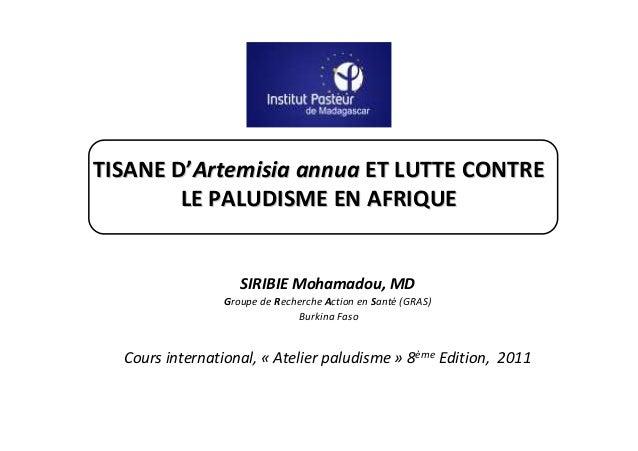 TISANE D'Artemisia annua ET LUTTE CONTRE        LE PALUDISME EN AFRIQUE                   SIRIBIE Mohamadou, MD           ...