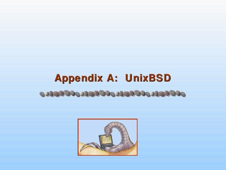 Appendix A:  UnixBSD