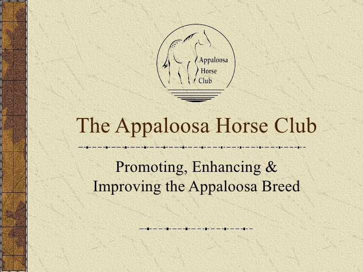 The Appaloosa Horse Club Promoting, Enhancing & Improving the Appaloosa Breed