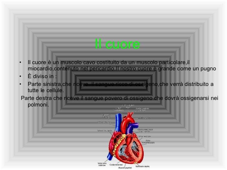 Il cuore <ul><li>Il cuore è un muscolo cavo costituito da un muscolo particolare,il miocardio,contenuto nel pericardio.Il ...