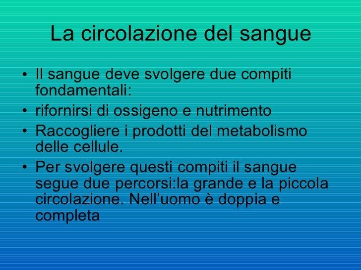 La circolazione del sangue <ul><li>Il sangue deve svolgere due compiti fondamentali: </li></ul><ul><li>rifornirsi di ossig...