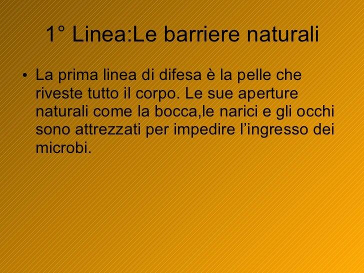 1° Linea:Le barriere naturali <ul><li>La prima linea di difesa è la pelle che riveste tutto il corpo. Le sue aperture natu...