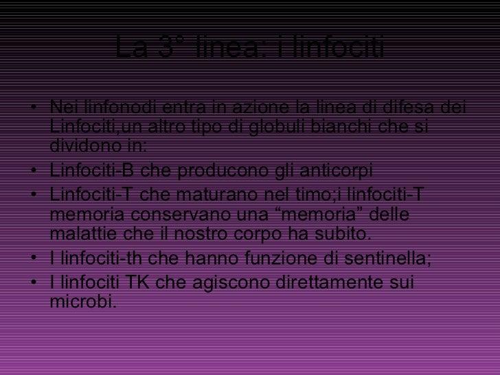La 3° linea: i linfociti <ul><li>Nei linfonodi entra in azione la linea di difesa dei Linfociti,un altro tipo di globuli b...