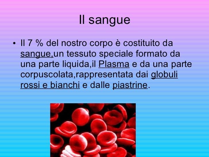 Il sangue <ul><li>Il 7 % del nostro corpo è costituito da  sangue, un tessuto speciale formato da una parte liquida,il  Pl...