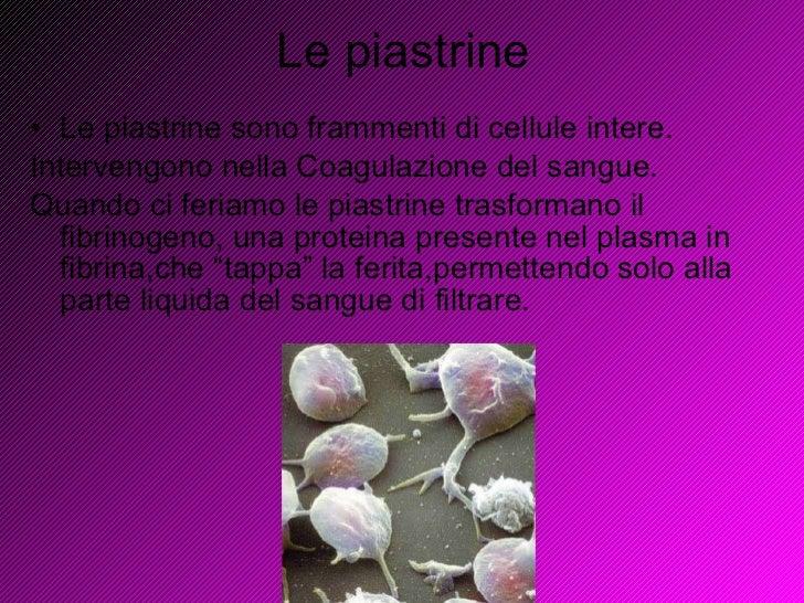 Le piastrine <ul><li>Le piastrine sono frammenti di cellule intere. </li></ul><ul><li>Intervengono nella Coagulazione del ...