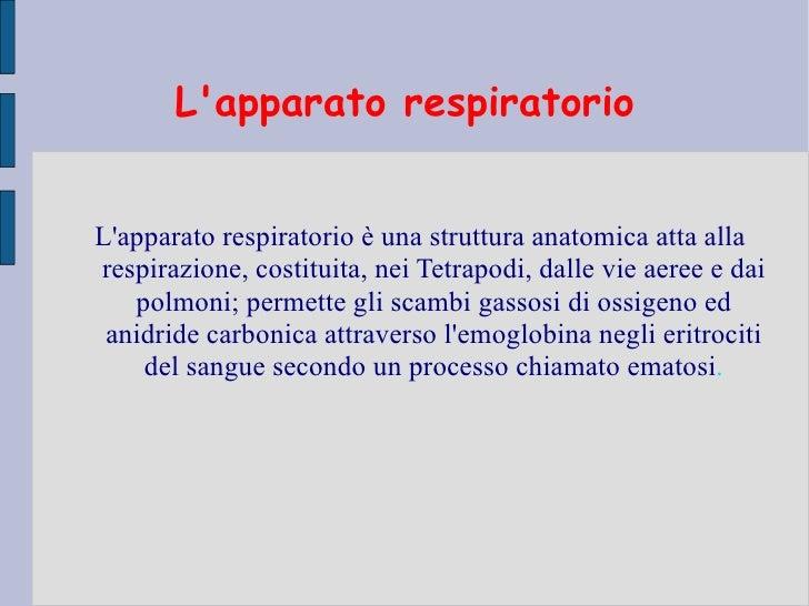 Lapparato respiratorioLapparato respiratorio è una struttura anatomica atta allarespirazione, costituita, nei Tetrapodi, d...