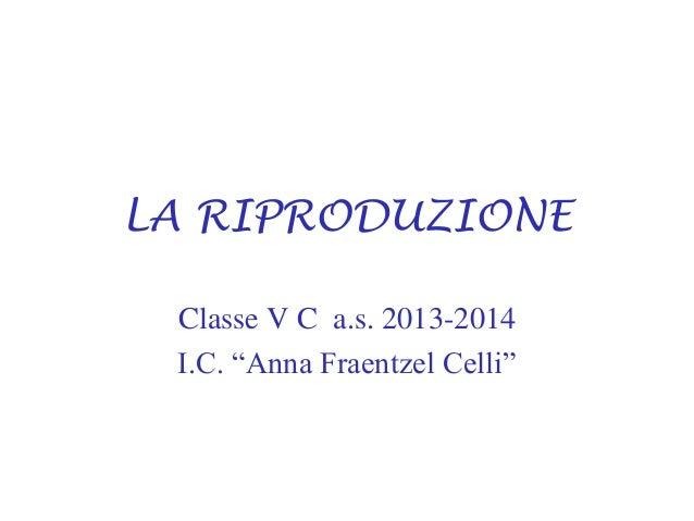 "LA RIPRODUZIONE Classe V C a.s. 2013-2014 I.C. ""Anna Fraentzel Celli"""