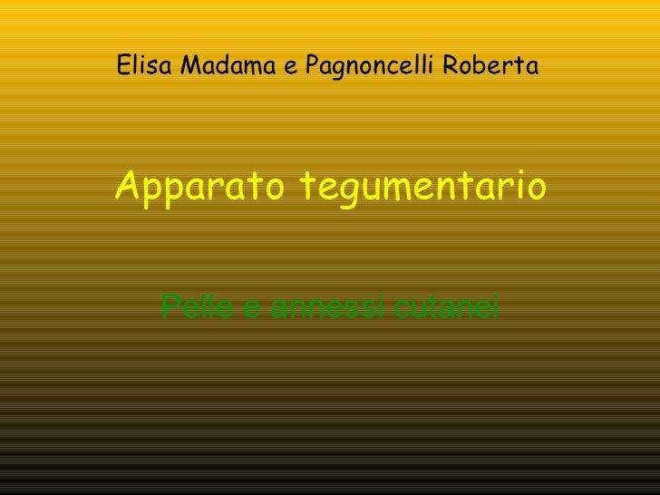 Apparato tegumentario Pelle e annessi cutanei Elisa Madama e Pagnoncelli Roberta