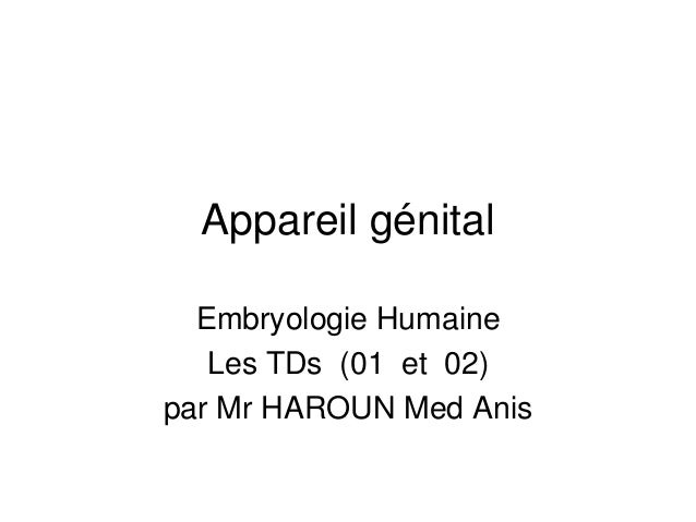 Appareil génital Embryologie Humaine Les TDs (01 et 02) par Mr HAROUN Med Anis