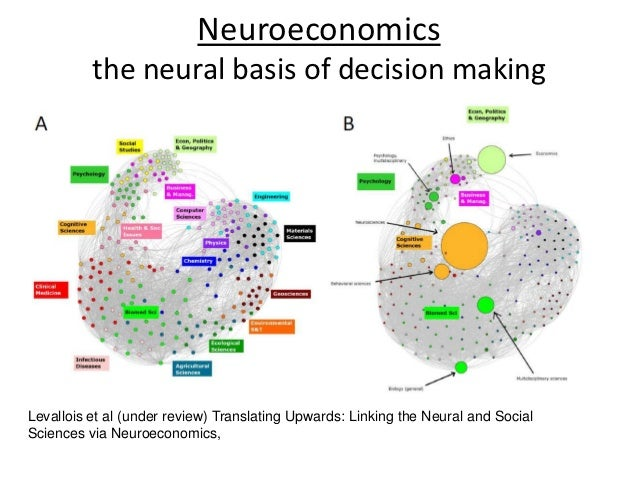 neuroeconomics essay Foundations of neuroeconomics: from philosophy to practice  essays articulate a specific perspective on a topic of broad interest to scientists.
