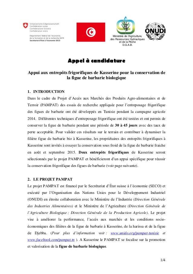 1/4 Appel à candidature Appui aux entrepôts frigorifiques de Kasserine pour la conservation de la figue de barbarie biolog...