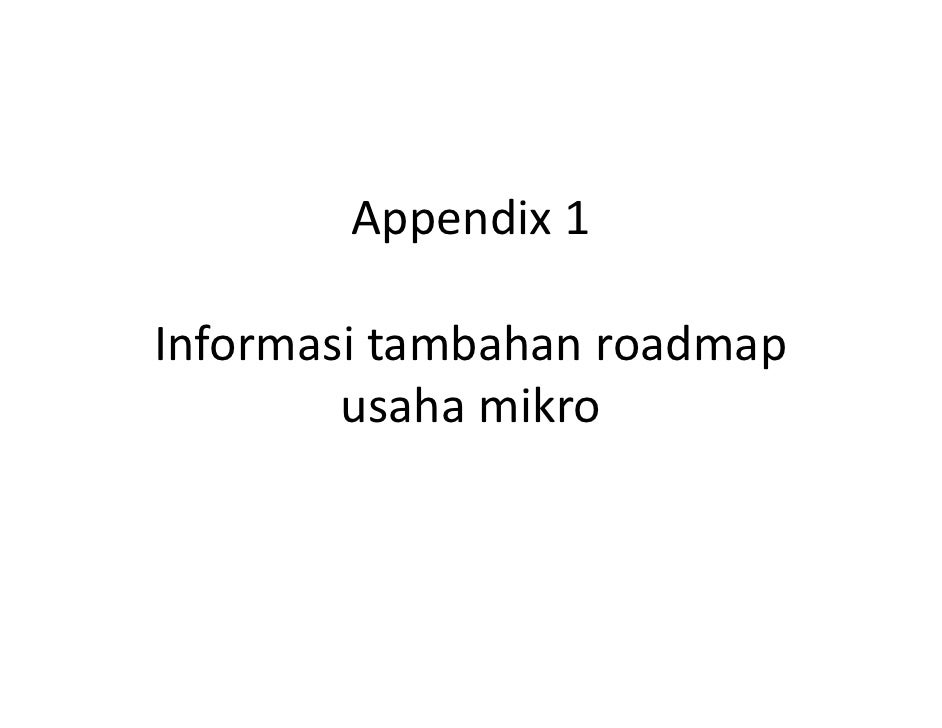Appendix1  Informasitambahanroadmap         usahamikro
