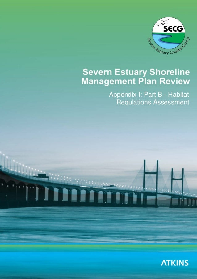 Severn Estuary SMP2 – Appendix I – Part B – Habitats Regulation Assessment i Severn Estuary SMP Review Appendix I: Part B ...
