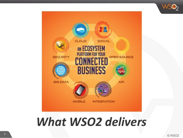 ** What WSO2 delivers