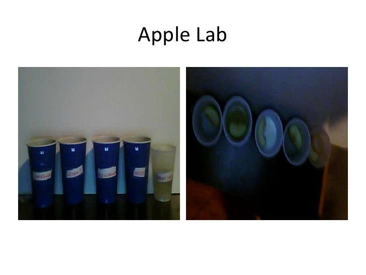 Apple Lab  <br />