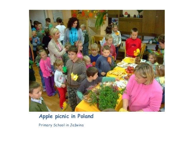 Apple picnic in Poland Primary School in Jaźwina