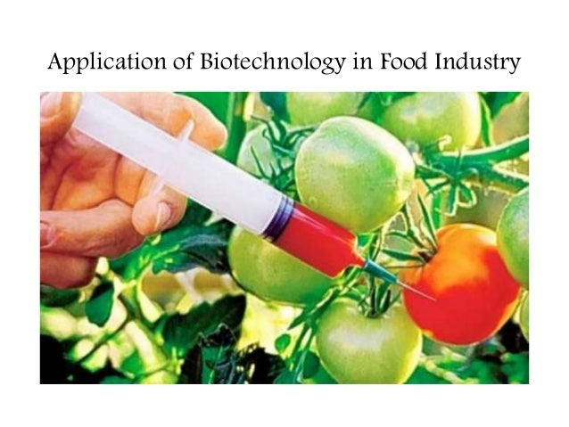 role of microorganisms in food industry pdf