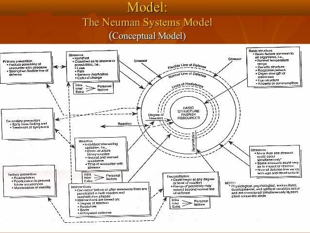 neuman model