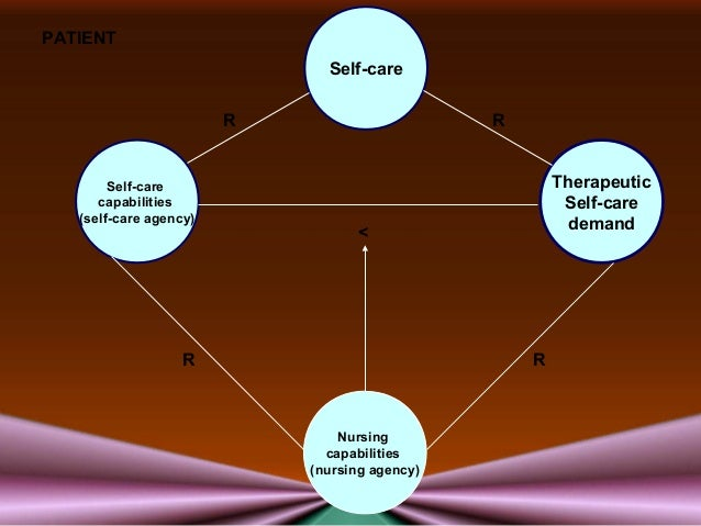 the concept of a nursing theory The nursing need theory was developed by virginia a henderson to define the unique focus of nursing practice the theory focuses on the importance of increasing the patient's independence to hasten their progress in the hospital henderson's theory emphasizes on the basic human needs and how.