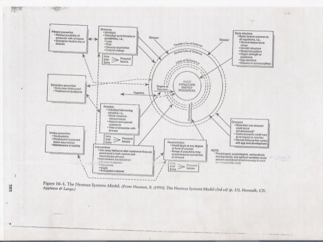 Application of theories, models and conceptual frameworks