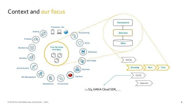 8PUBLIC© 2018 SAP SE or an SAP affiliate company. All rights reserved. ǀ Setup Develop TestRun CI/CD Operate Data Services...