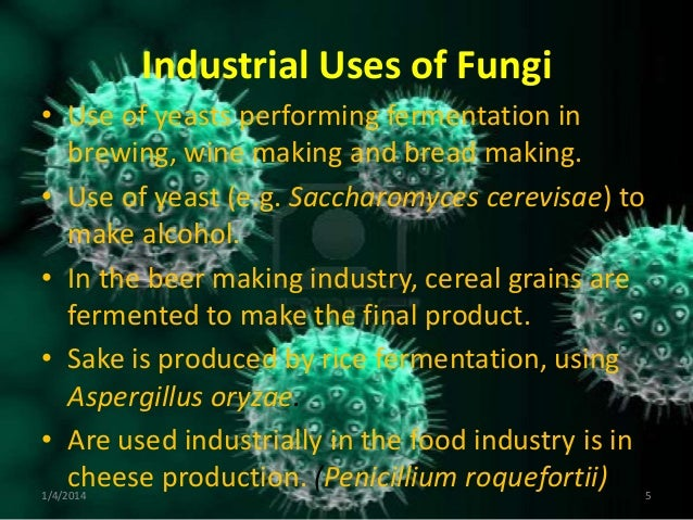 INDUSTRIAL USES OF BACTERIA PDF DOWNLOAD