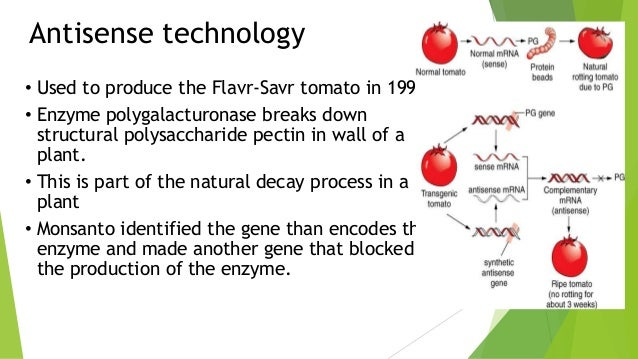 the applications and techniques involve in genetic engineering A name for the industry built around the application of genetic engineering techniques typically to replace defective genes involved in genetic disorders.
