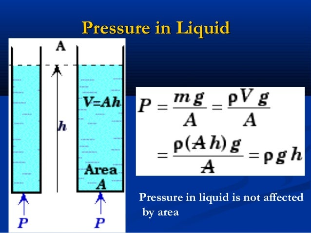 how to use a pressure biofeedback unit