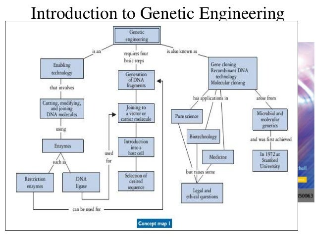 an introduction to genetic engineering Biosafety module resource book a introduction to molecular biology and genetic engineering oliver brandenberg zephaniah dhlamini alessandra sensi.