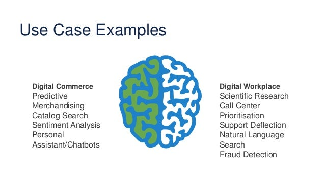 Use Case Examples Digital Commerce Predictive Merchandising Catalog Search Sentiment Analysis Personal Assistant/Chatbots ...