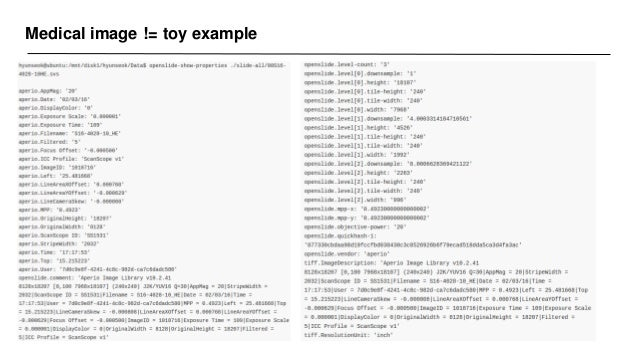 Medical image != toy example