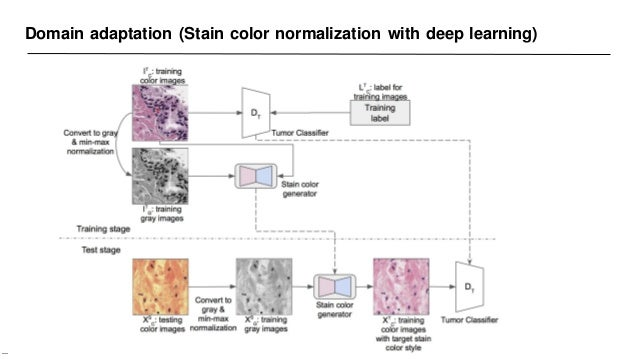 Domain adaptation (Stain color normalization with deep learning) —