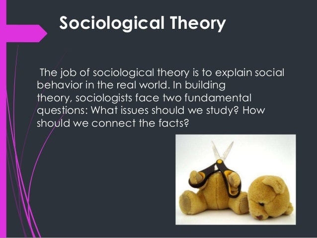 applying two theoretical approaches in sociology to an issue in contemporary society What is applied sociology  theory lends itself to two types of sociologies: 'basic research' and social interventionism  a systems engineering approach .