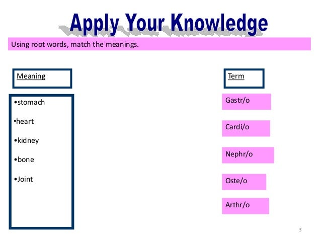 application root word