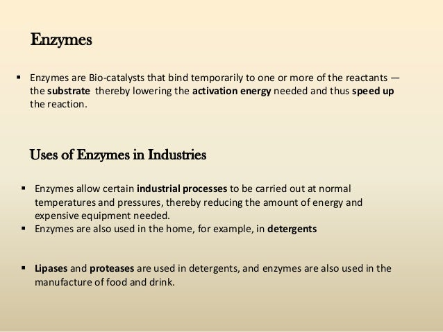 enzymes in the dairy industry Godfrey, t, & reichelt, j industrial enzymology: the application of enzymes in industryunited states.