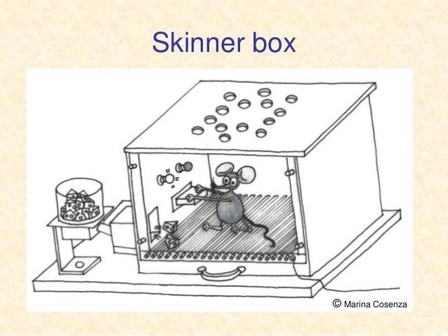 Apprendimento condizionamento Slide 2