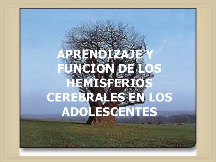 APRENDIZAJE Y FUNCION DE LOS HEMISFERIOS CEREBRALES EN LOS ADOLESCENTES