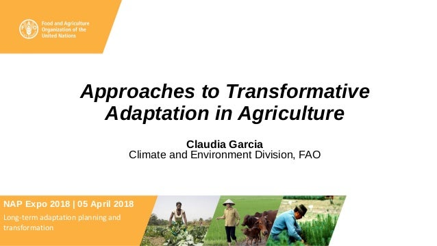 Approaches to Transformative Adaptation in Agriculture Claudia Garcia Climate and Environment Division, FAO NAP Expo 2018 ...