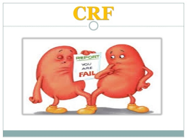 Approach to renal patient 2