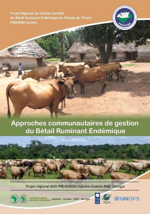 Approches communautaires de gestion du Bétail Ruminant Endémique Projet Régional de Gestion Durable du Bétail Ruminant End...