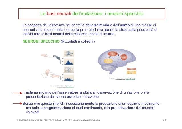 Approfondimento - Neuroni specchio e autismo ...