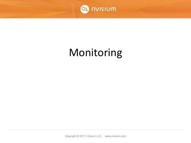 Copyright © 2017 nVisium LLC · www.nvisium.com Monitoring