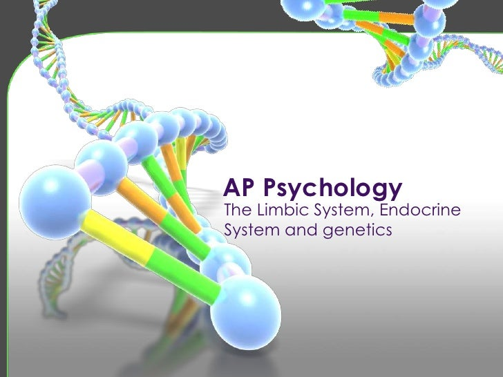 AP Psychology<br />The Limbic System, Endocrine System and genetics<br />
