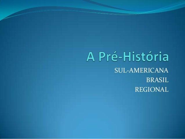 SUL-AMERICANA BRASIL REGIONAL