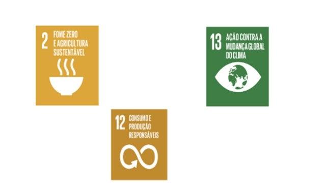 Segurança Alimentar Global: Uma política de Estado - Eduardo Assad Slide 3