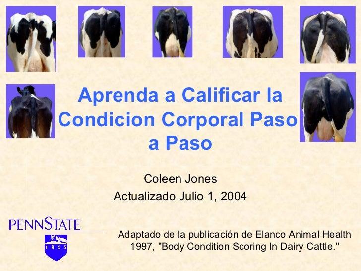 Aprenda a Calificar laCondicion Corporal Paso        a Paso          Coleen Jones     Actualizado Julio 1, 2004     Adapta...
