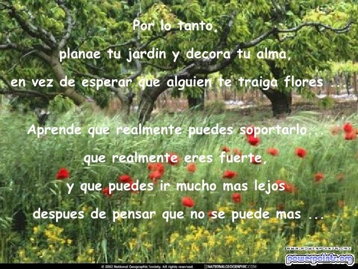 Por lo tanto,  planae tu jardin y decora tu alma,  en vez de esperar que alguien te traiga flores ... Aprende que realment...